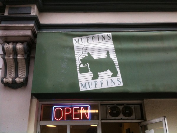 Muffins is bringing you some muffins!