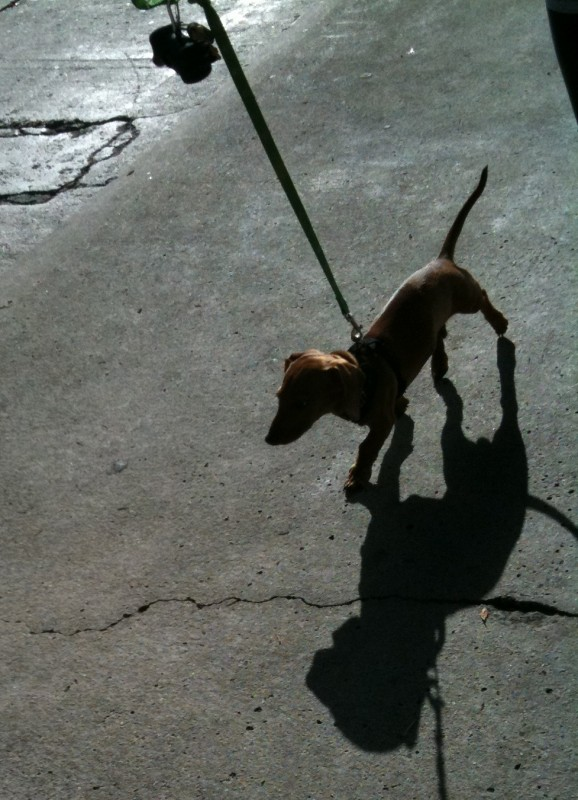 Just me an' my shadow, strollin' down the avenue...