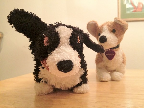 Two stuffed animal dogs