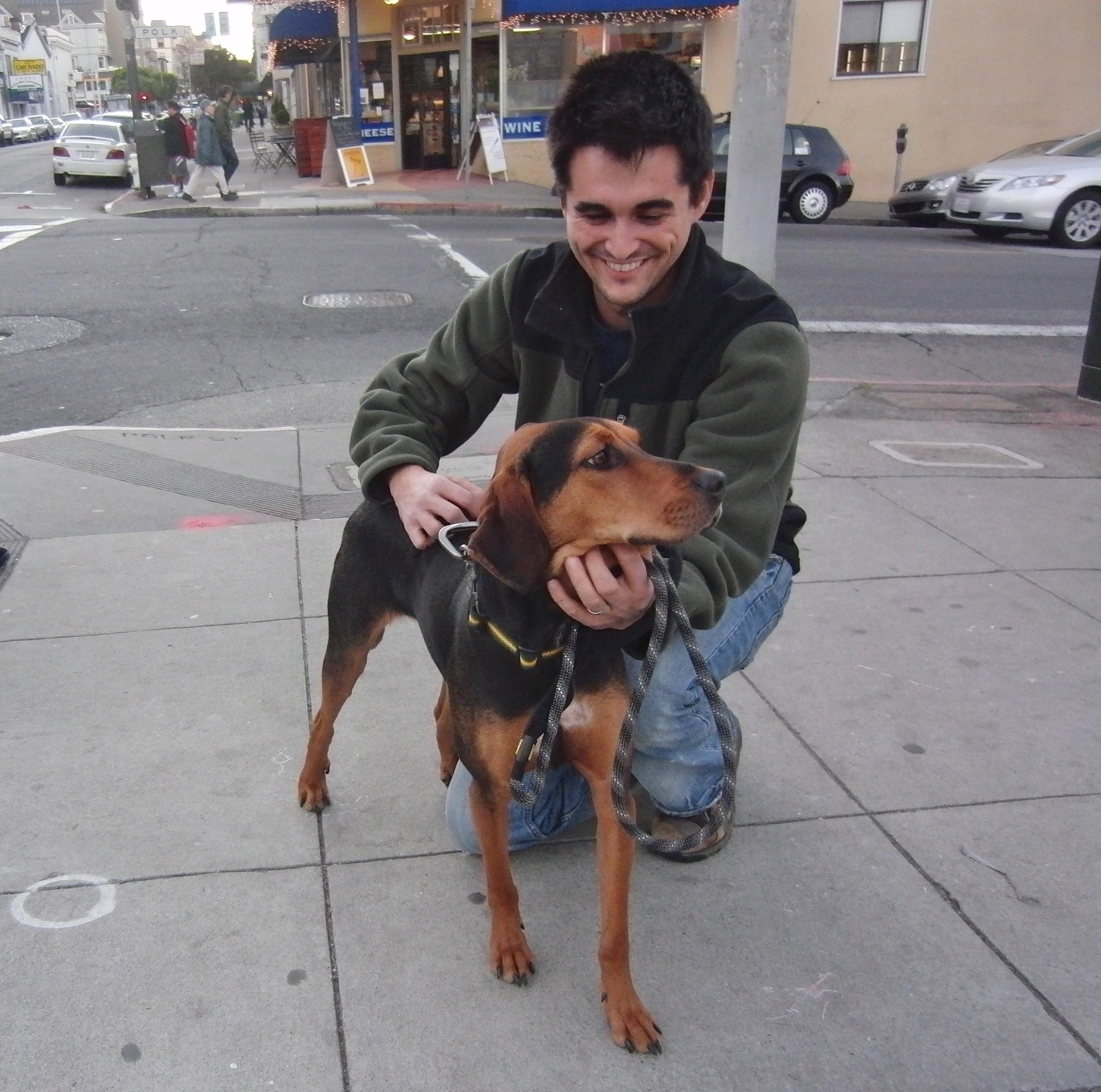 Treeing Walker Coonhound Mix