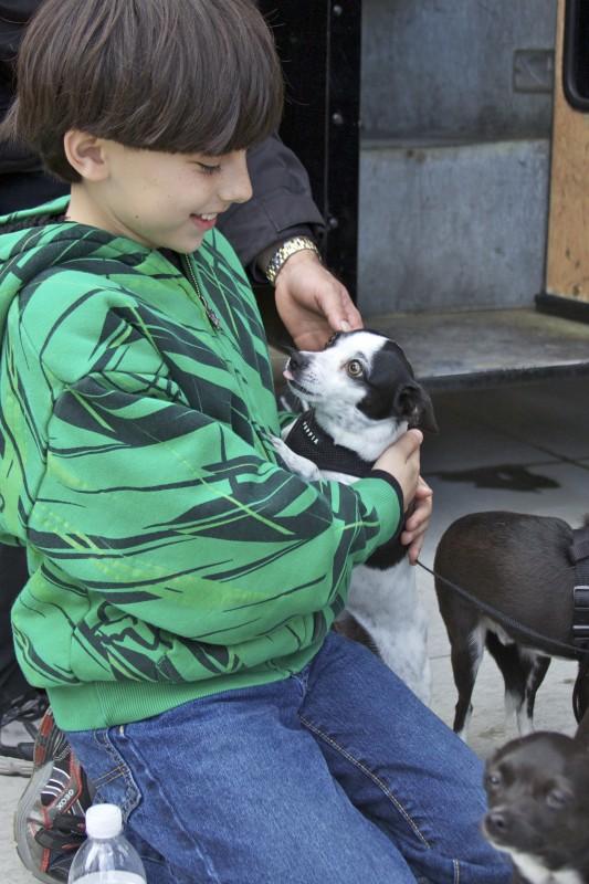 Chihuahua and Kid