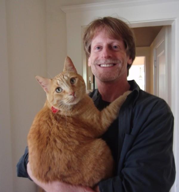 Marmalade Tabby Cat
