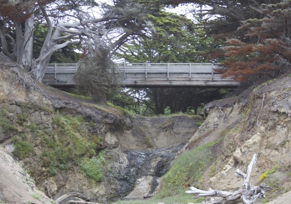 Bridge Near Ritz Carlton Half Moon Bay
