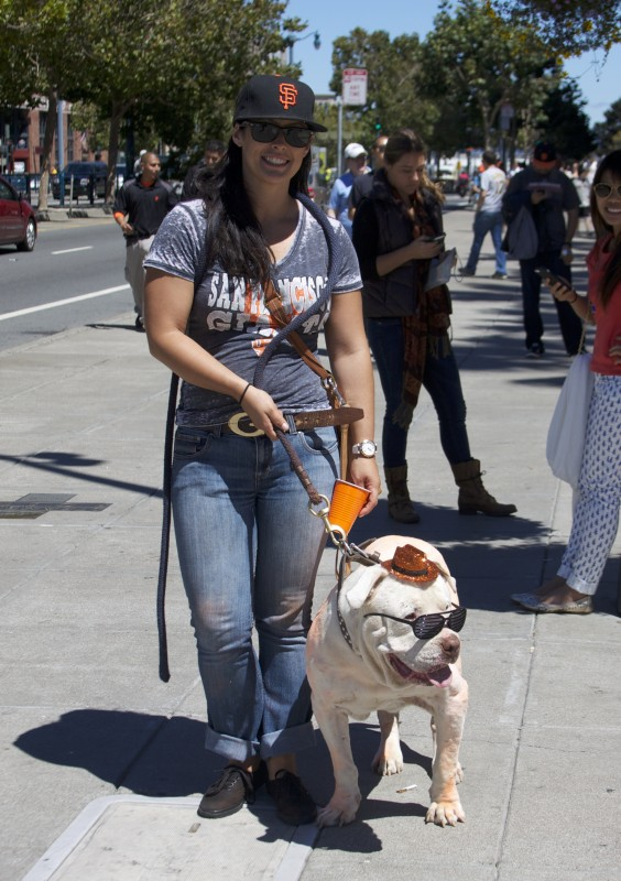 White Bulldog With Tiny Orange Giants Cowboy Hat And Sunglasses