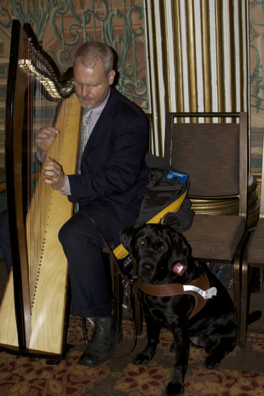 Man With Black Labrador Retriever Guide Dog Playing Celtic Harp