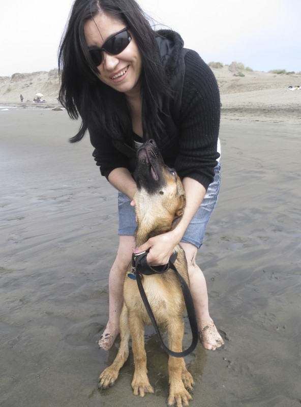 German Shepherd Puppy and Woman On Beach