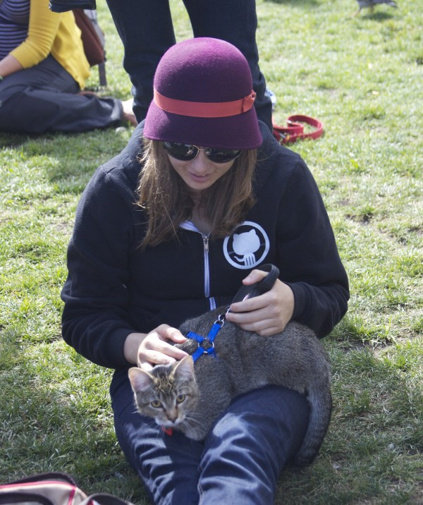 Woman in Octocat Sweatshirt With Cat In Her Lap