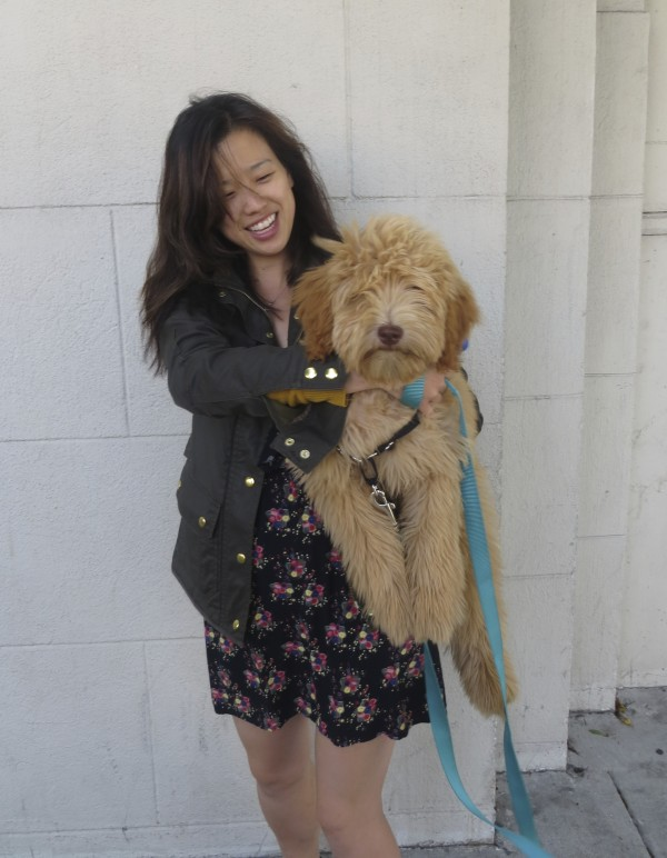 Woman Holding Large Golden Retreiver/Labrador Retriever/Poodle Mix