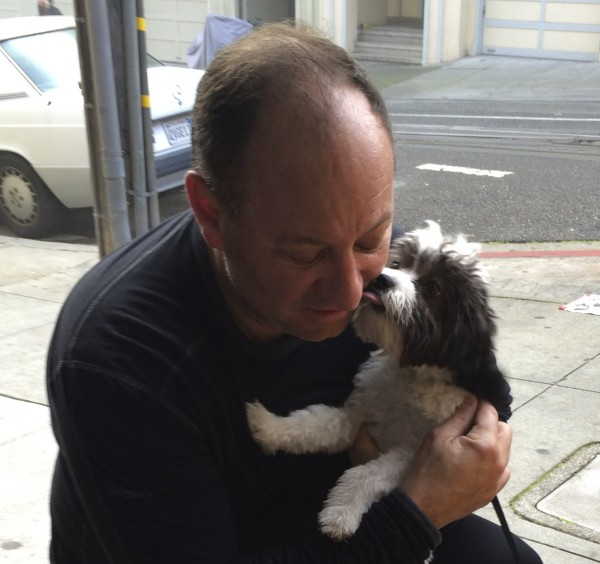 Black And White Maltese Poodle Mix Puppy Licking Man's Face