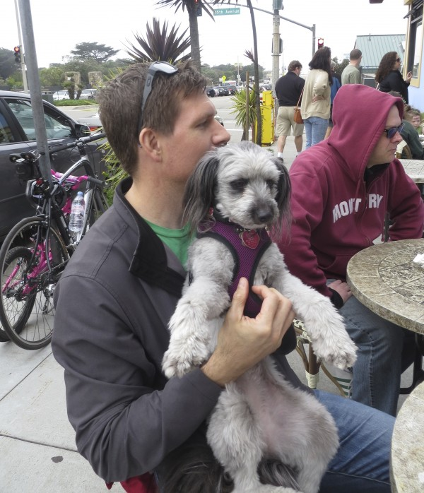 Man With Schnauzer/Poodle Mix In His Lap, Petting Its Chest
