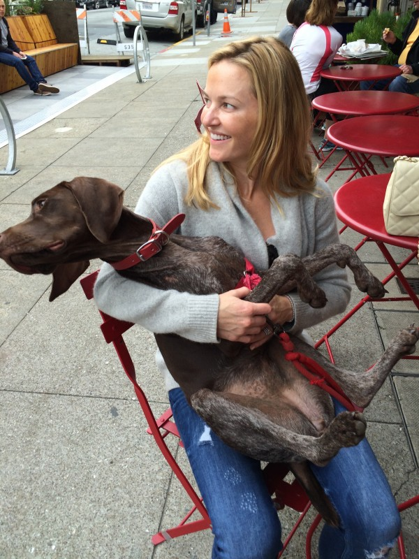 Woman Holding German Shorhaired Pointer In Her Lap