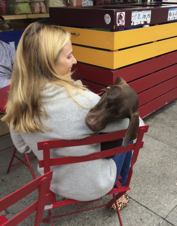 Woman With German Shorthaired Pointer In Her Lap Resting Its Head On Her Shoulder