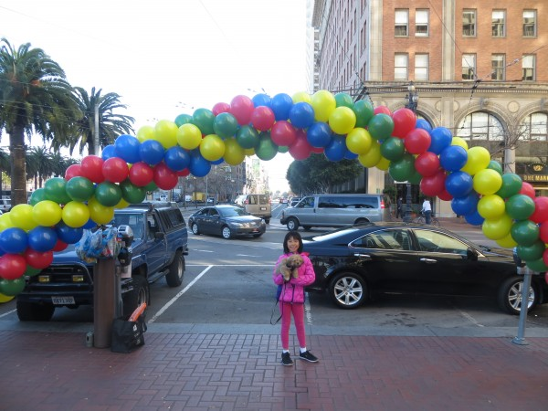 Small Girl Holding Shih Tzu Pomeranian Mix Puppy Under Arch Made Of Rainbow Balloons