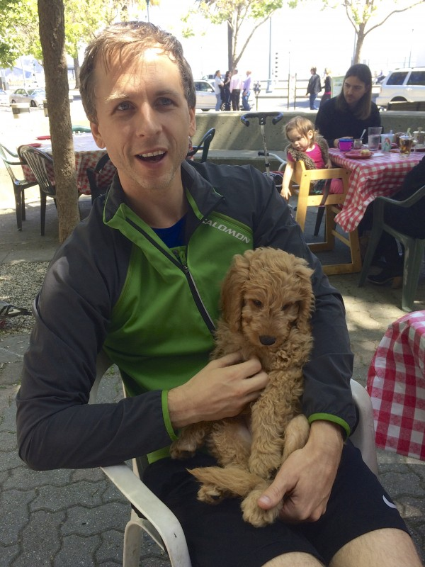 Man Holding 11-Week-Old Yellow Labradoodle Puppy