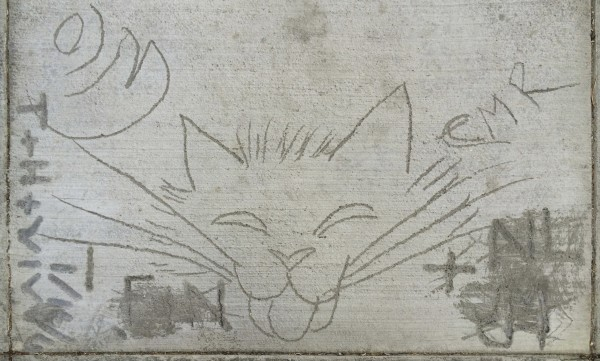 Sidewalk Art Cat