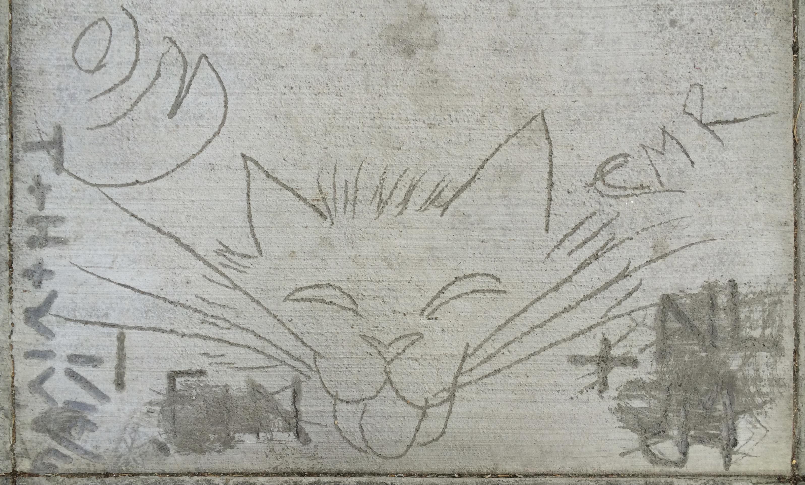 Sidewalk Art Cat