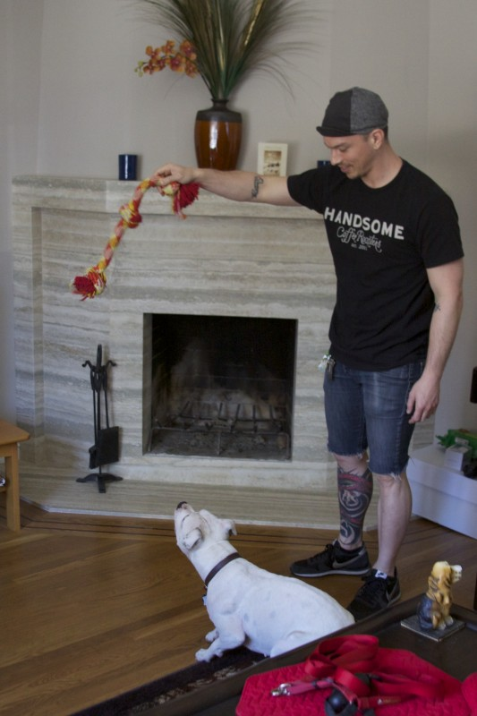White Pit Bull About To Jump For Rope Toy