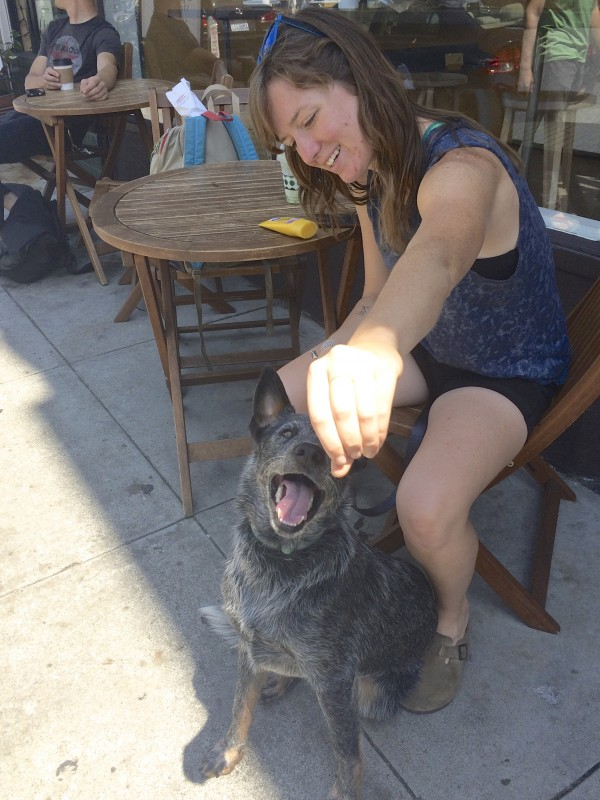 Woman Offering Treat To Smiling Blue Heeler