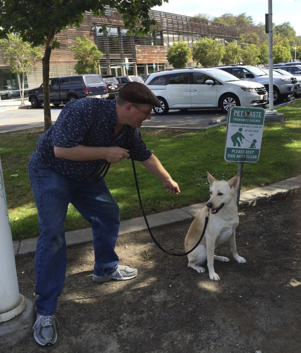Picture of Man Pointing At Dog Next To Sign With Picture Of Man Pointing At Dog