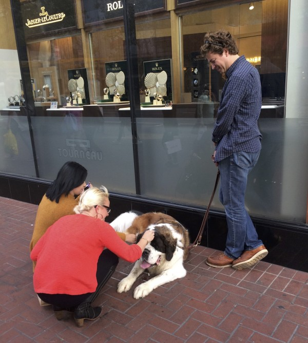 Two Women Petting Man's Saint Bernard