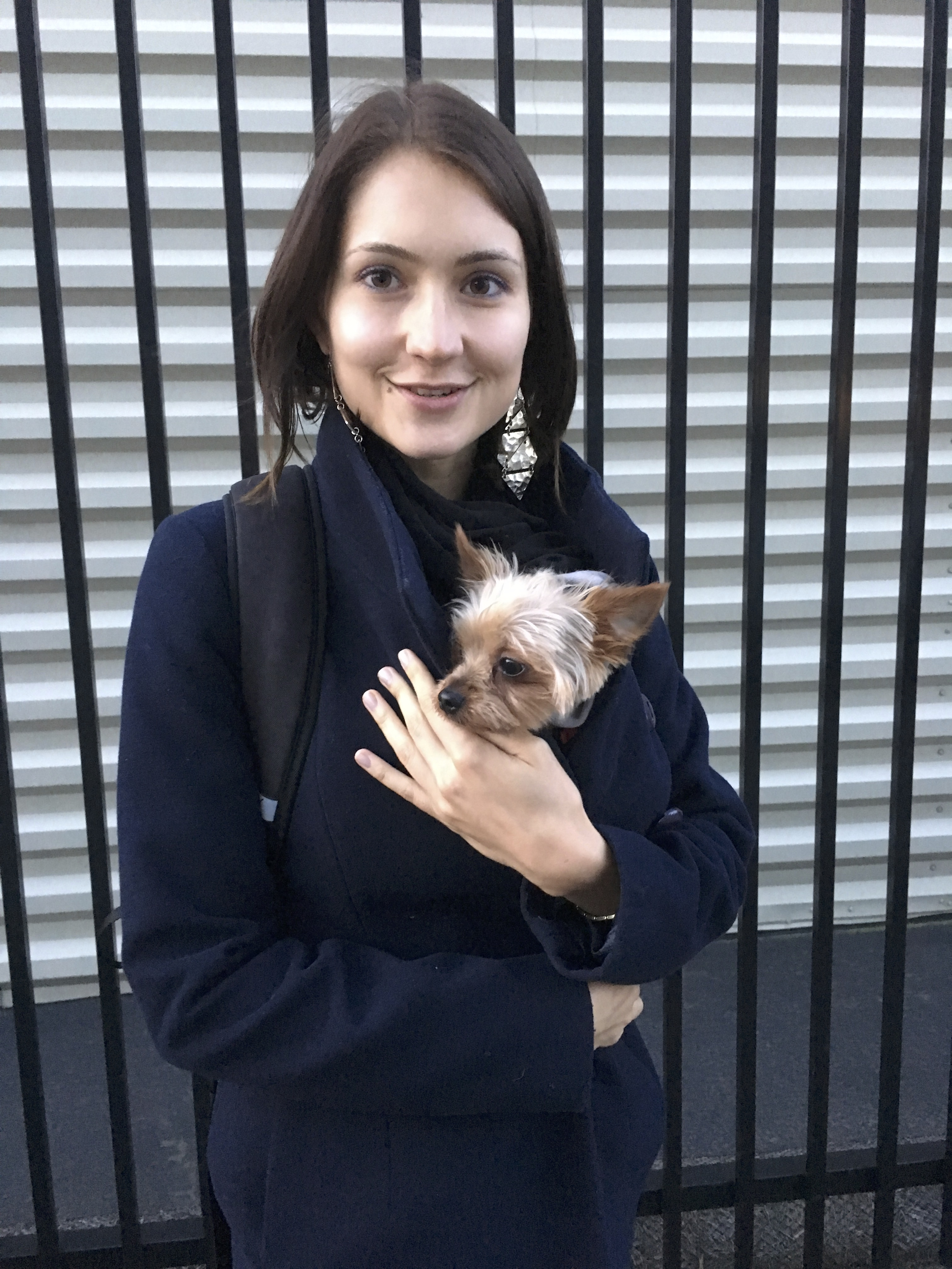 Woman Holding Yorkshire Terrier In Her Jacket For Warmth