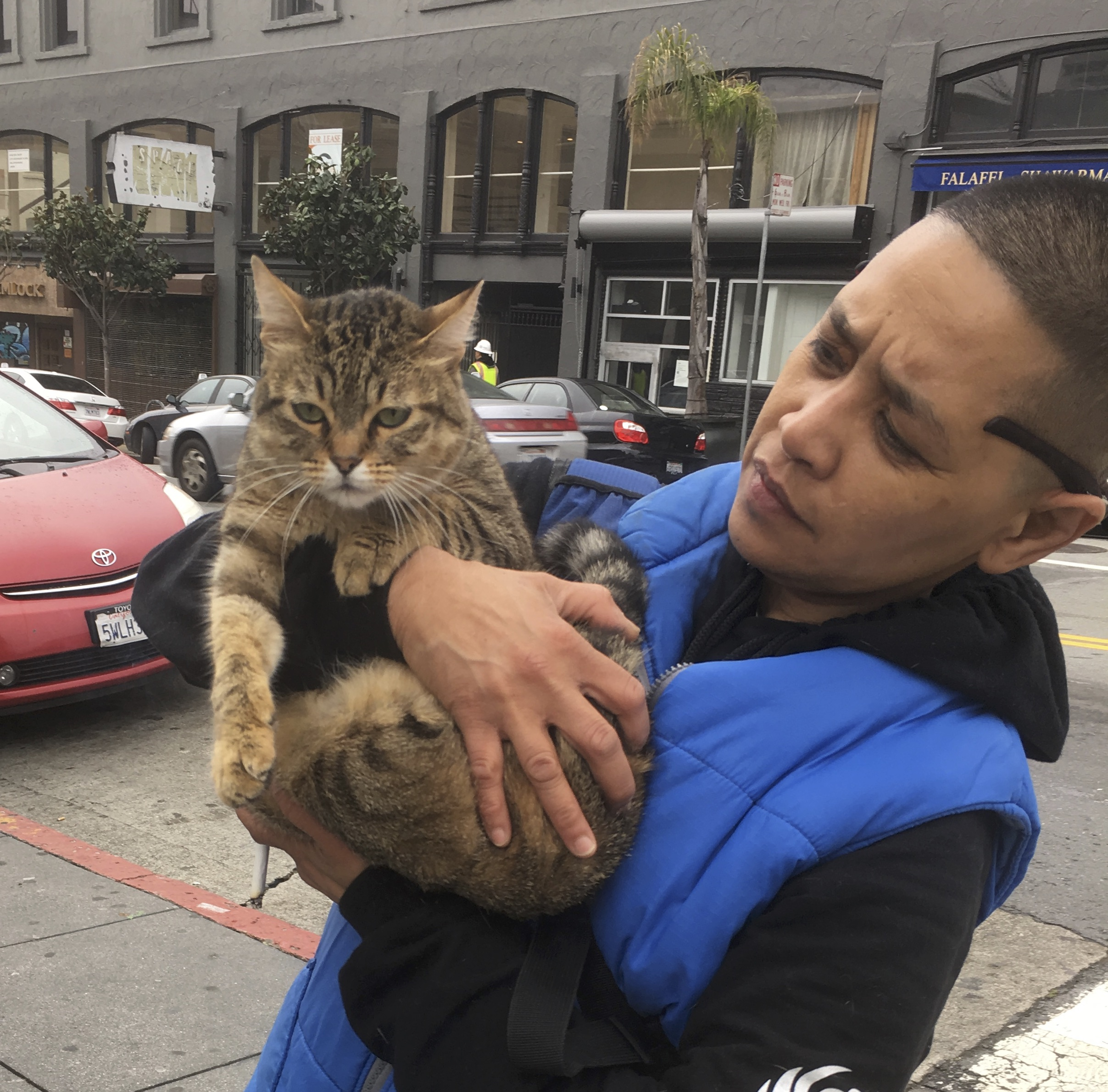Person Holding Cat On Street
