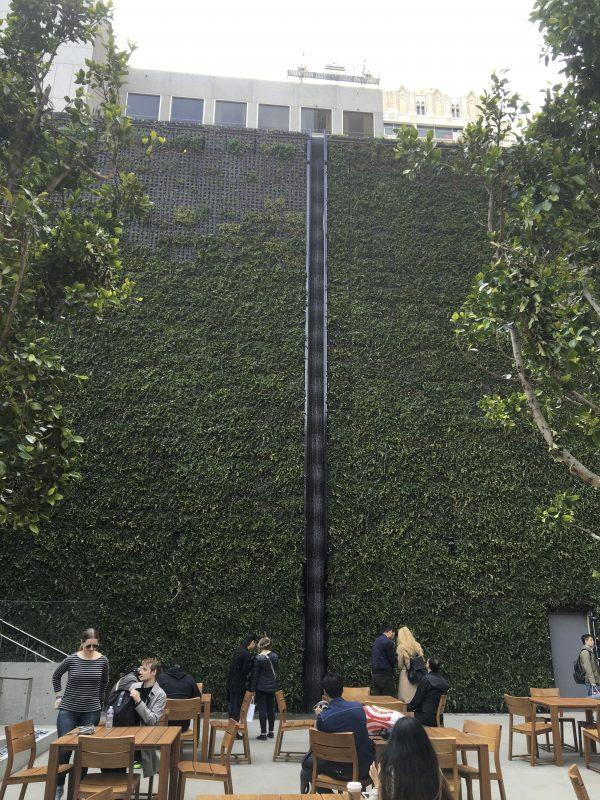 Apple's Green Wall In San Francisco