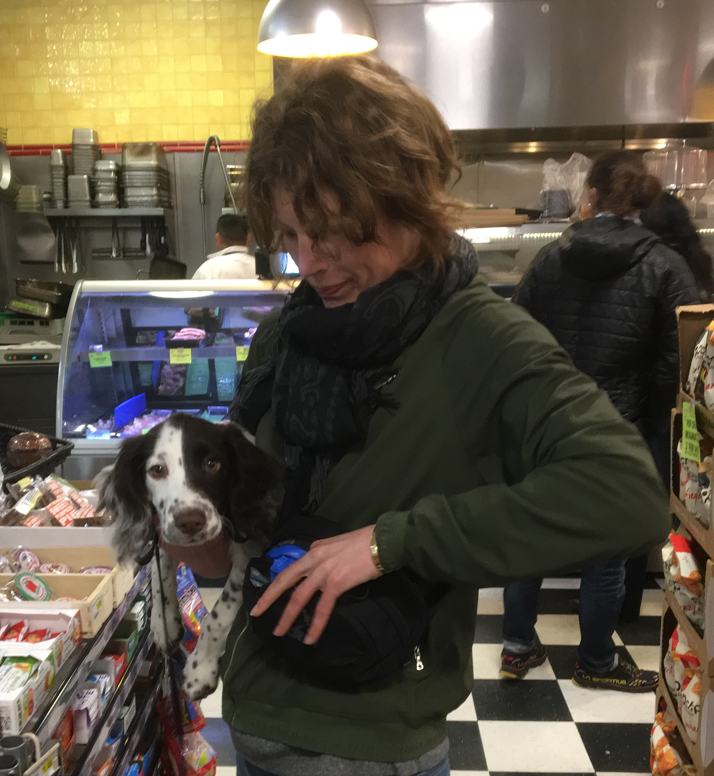 Woman Holding Adorable Little English Springer Spaniel Puppy