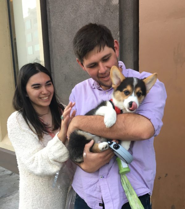 Man Holding Pembroke Welsh Corgi Puppy While Woman Looks On