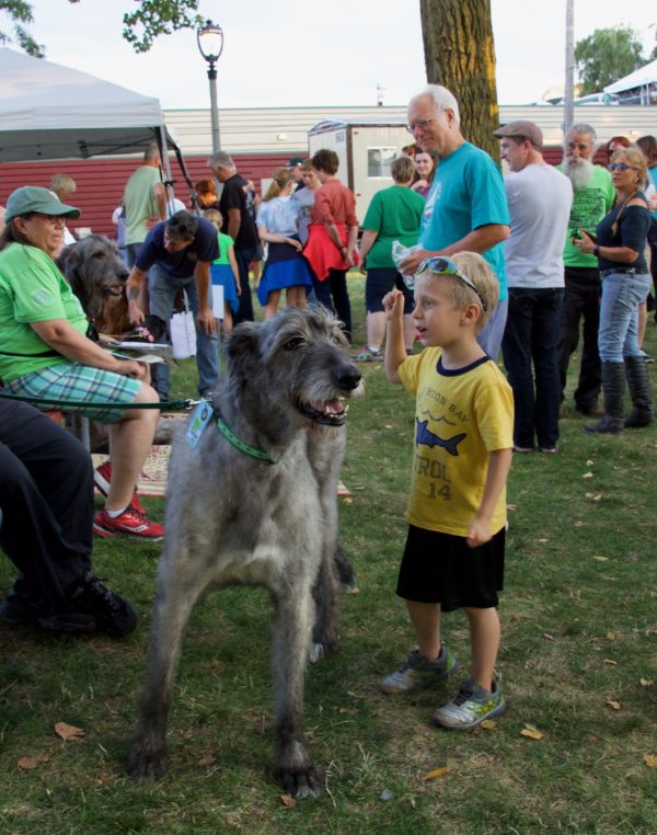 Boy Admiring Irish Wolfhound