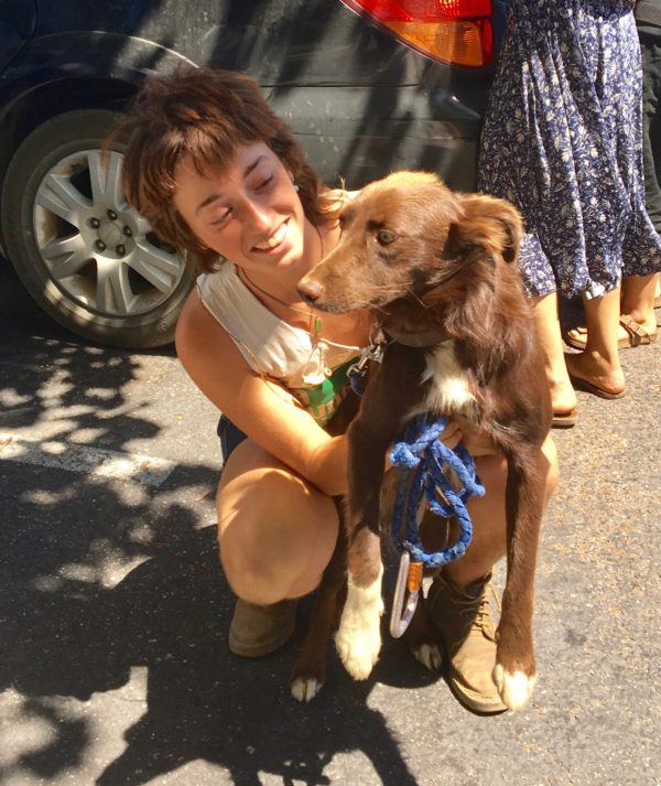 Woman Holding Brown And White Border Collie Mix