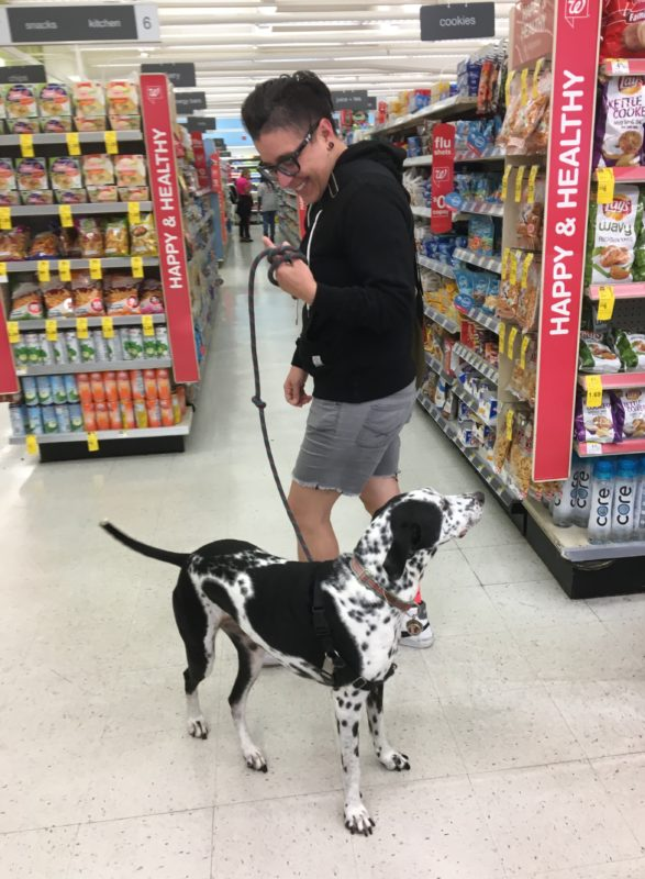Woman With Whippet English Pointer Mix