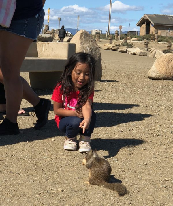 Little Girl Feeding Ground Squirrel