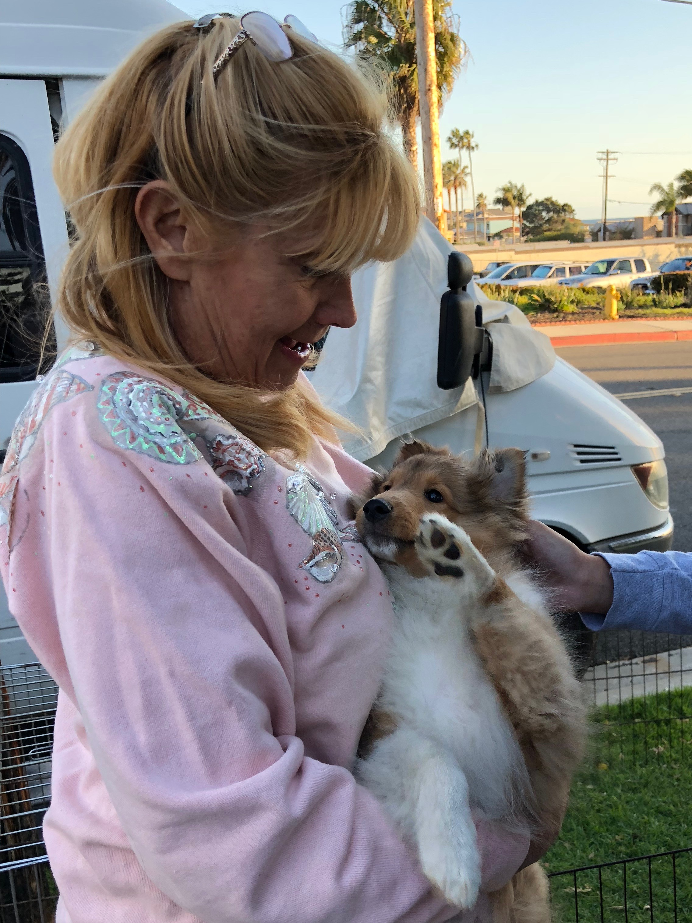Woman Holding Sheltie Puppy