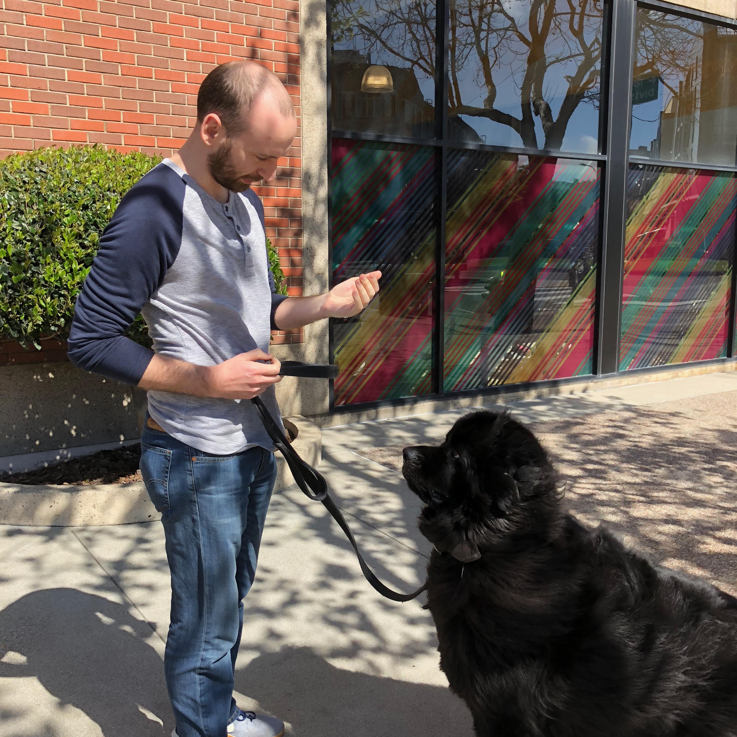 Man Talking Animatedly To Black Newfoundland Dog