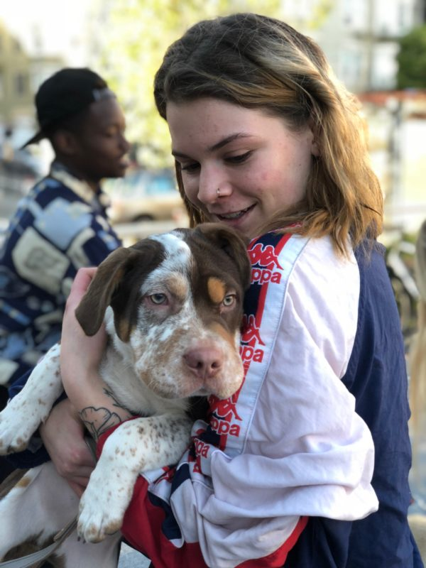 Woman Hugging Border Collie Shar Pei Mix Puppy