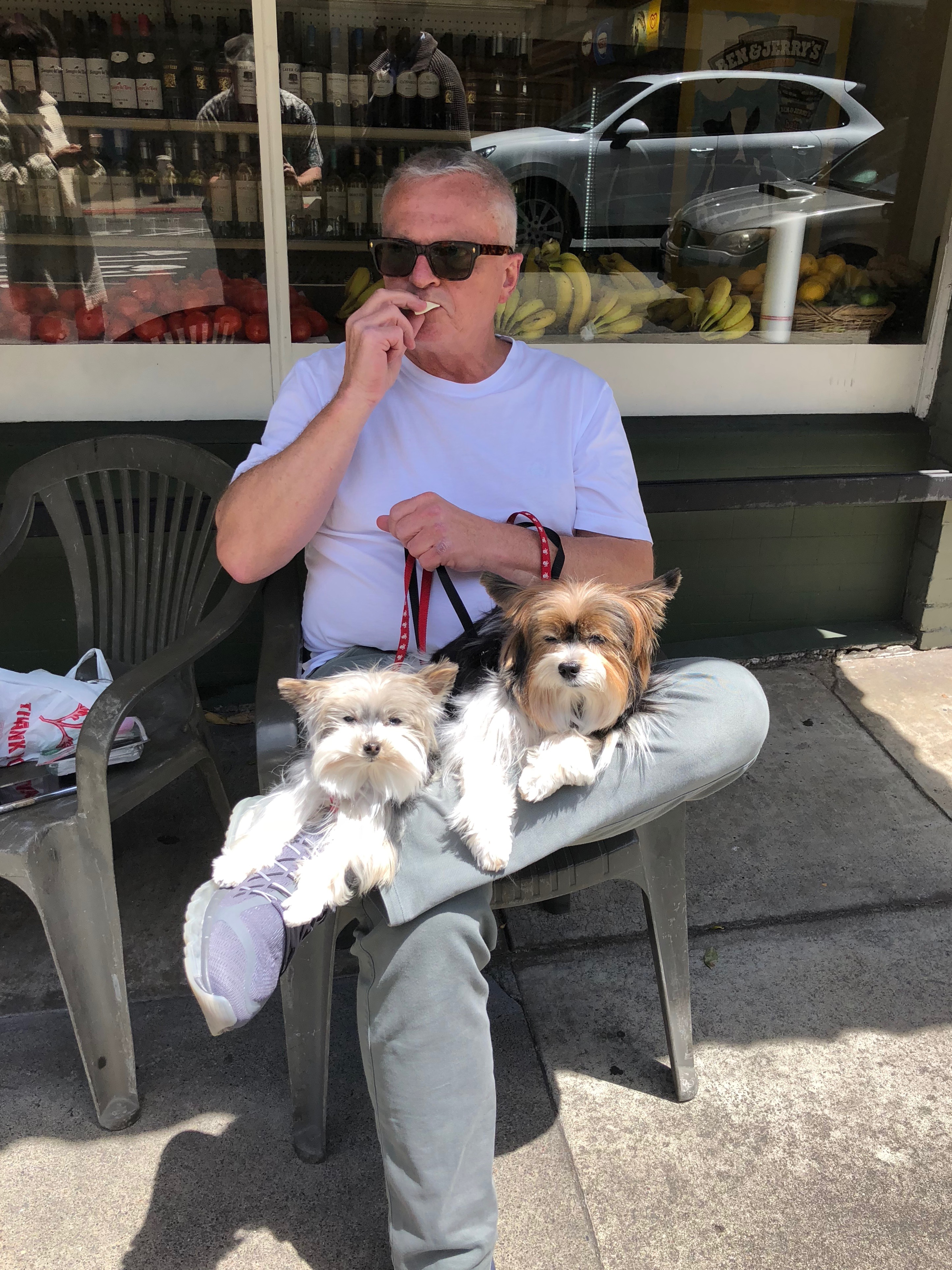 Man With Two Small Dogs In His Lap