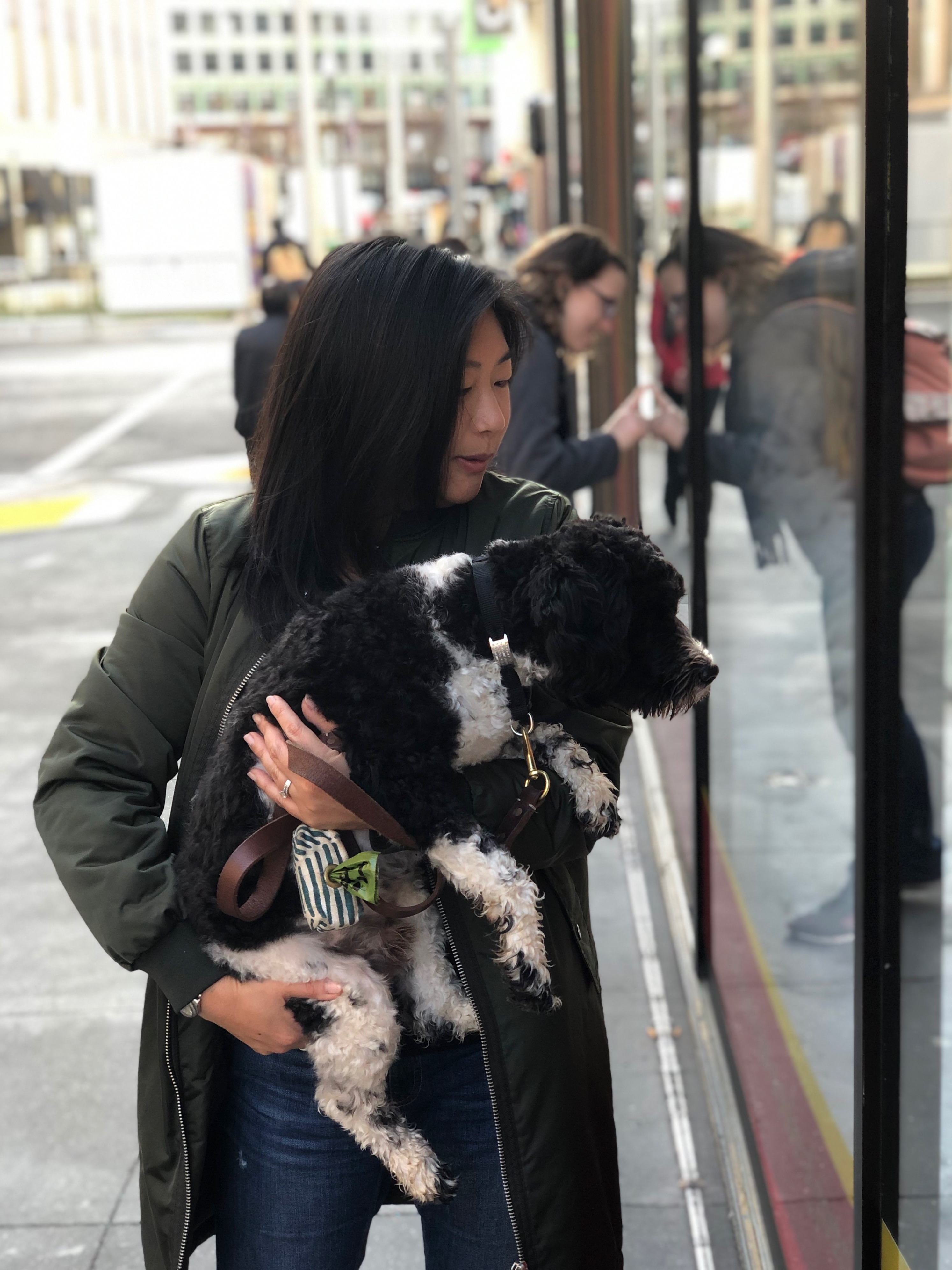 Woman Holding Schnauzer Poodle Mix While They Both Look In A Store Window