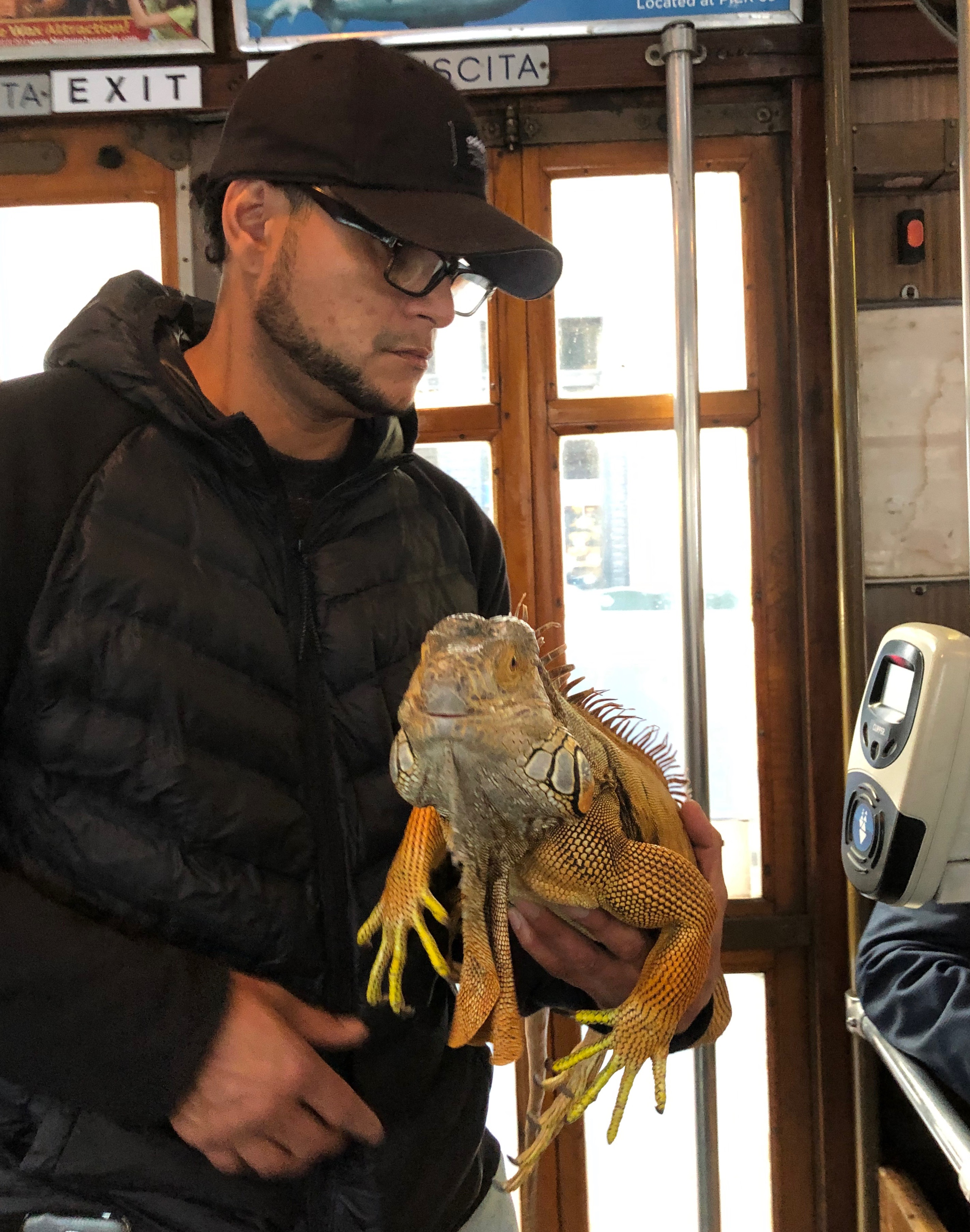 Man Holding Iguana