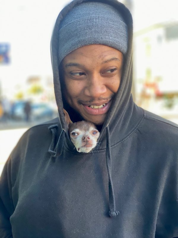 Man With Chihuahua In His Hoodie