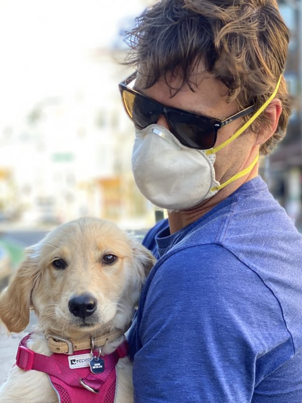 Man With Mask Holding Golden Retriever Puppy