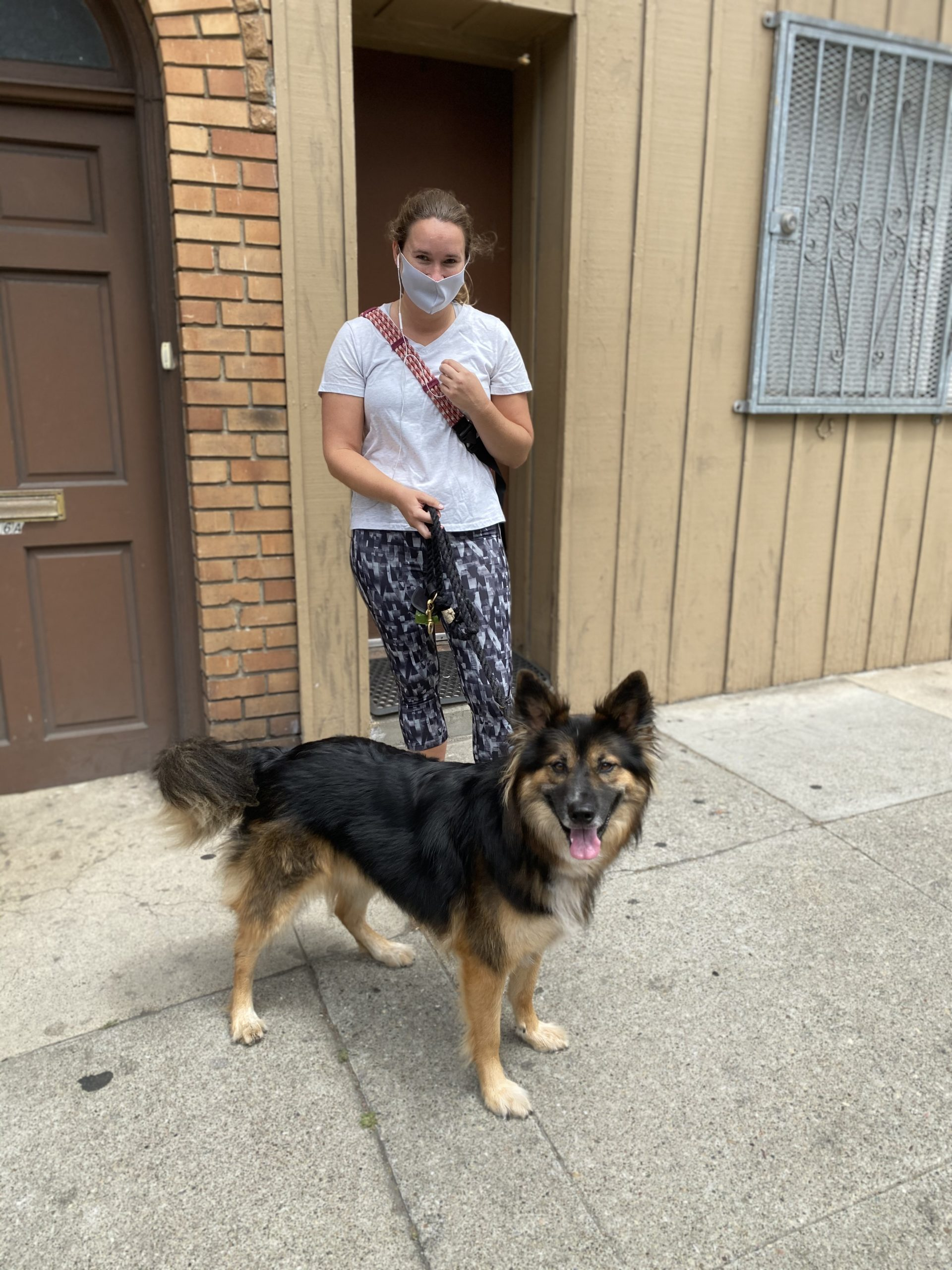 Woman In Mask With German Shepherd Border Collie Mix
