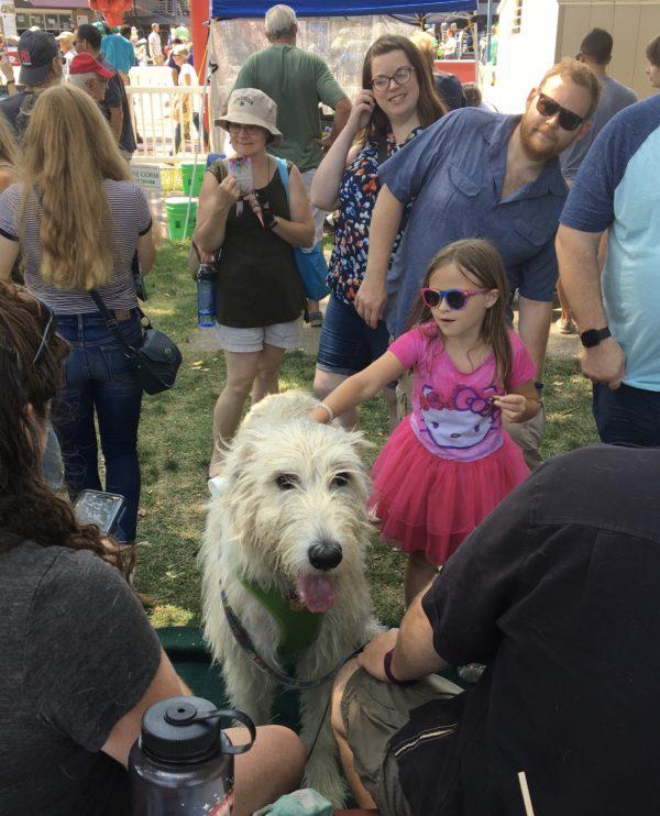 Little Girl Petting Irish Wolfhound