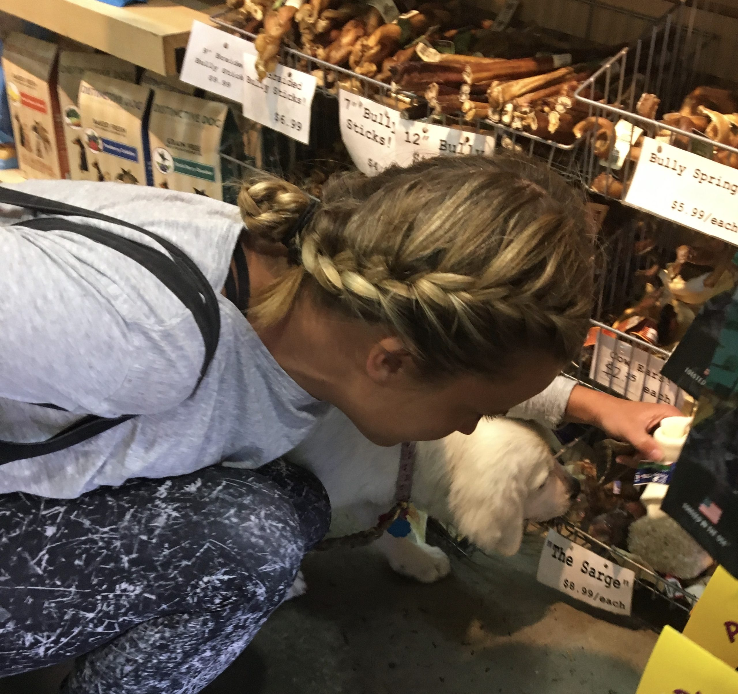 Woman And Her English Cream Golden Retriever Choosing A Chew Toy