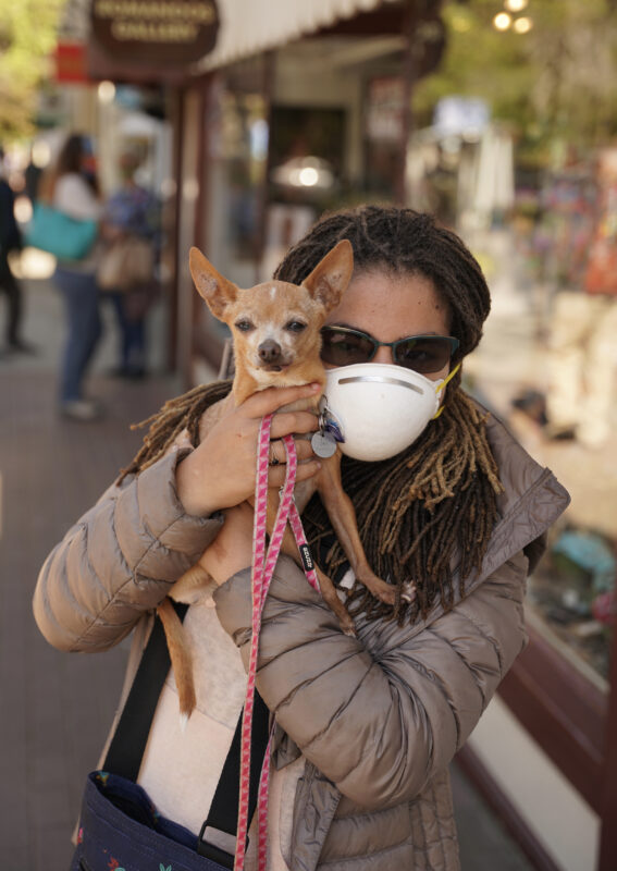 Woman With Mask Holding Chihuahua Mix