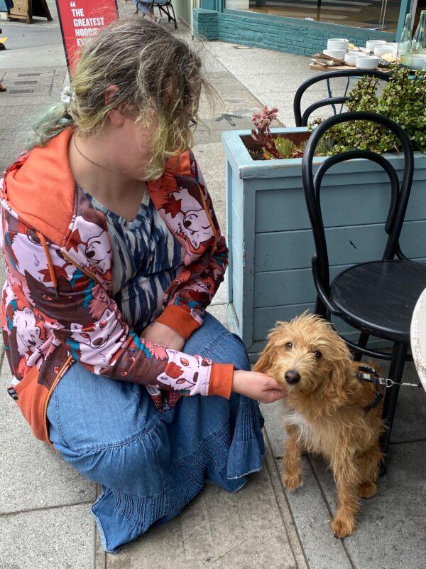 Woman Petting Golden Retriever Mix Puppy