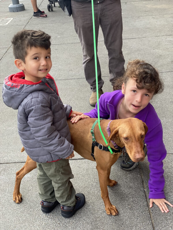 A Boy And A Girl Petting A Vizsla