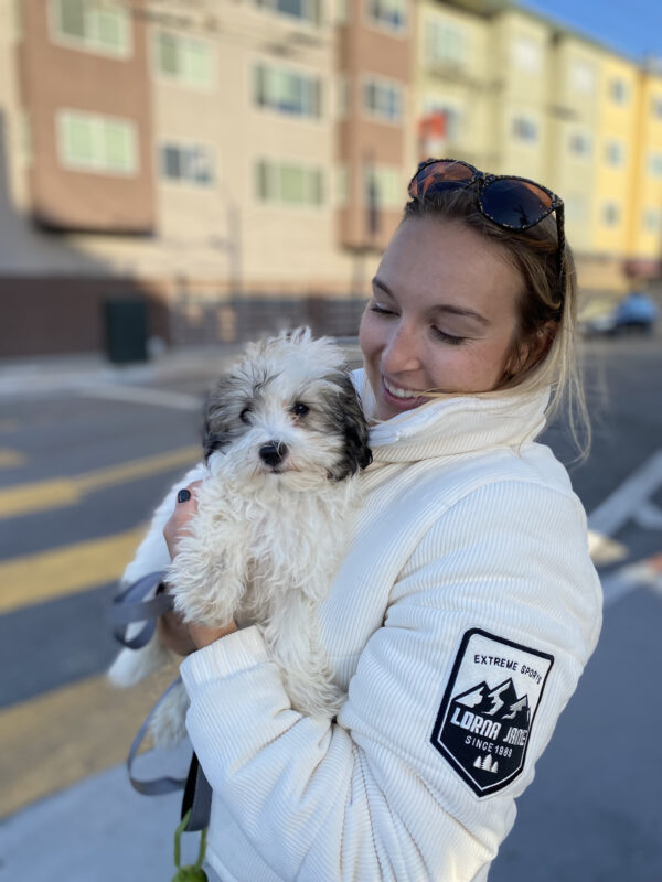 Woman Holding Havanese Puppy